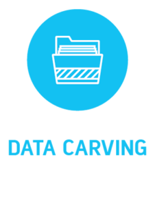 icon-data-carving